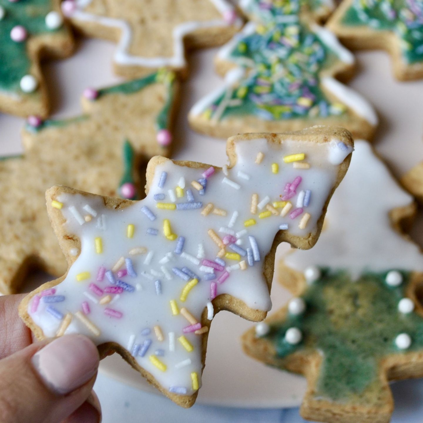 Festive Vegan Gluten Free Biscuits Recipe, Eli Brecher