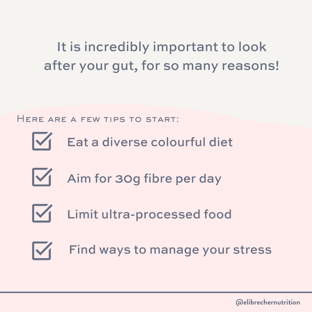 gut health eli brecher nutrition